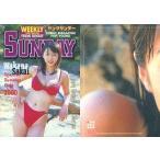 中古コレクションカード(女性) 012 : 酒井若菜/スペシャルカード(金箔押し)/Young Sunday Harvest Colle