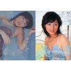 中古コレクションカード(女性) SP-4 : 山中めぐみ/SPカード(ミラー仕様)/山中めぐみ オフィシャルカードコレクション