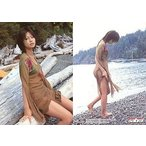 中古コレクションカード(女性) Y-43 : 安田美沙子/レギュラーカード/sabra トレーディングカード 安田美沙子