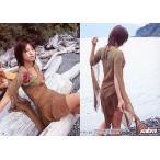 中古コレクションカード(女性) Y-45 : 安田美沙子/レギュラーカード/sabra トレーディングカード 安田美沙子