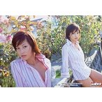 中古コレクションカード(女性) Y-48 : 安田美沙子/レギュラーカード/sabra トレーディングカード 安田美沙子