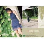 中古コレクションカード(女性) R54 : 安田美沙子/レギュラーカード/安田美沙子 コレクションカード 2004