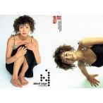 中古コレクションカード(女性) 075 : 井川遥/レギュラーカード/BOMB CARD HYPER 井川遥