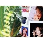 中古コレクションカード(女性) Megumi Yasu 085 : 安めぐみ/レギュラーカード/PRODUCE MASTER 安めぐみ