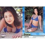 中古コレクションカード(女性) 074 : 小向美奈子/2005 YC PREMIUM CARD
