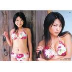 中古コレクションカード(女性) 03 : 川村ゆきえ/レギュラーカード/川村ゆきえオフィシャルカードコレクション