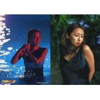 中古コレクションカード(女性) 7 : 酒井若菜/ビジュアルフォトカードコレクション酒井若菜
