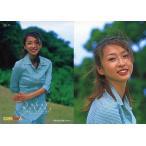 中古コレクションカード(女性) 23 : 酒井若菜/ビジュアルフォトカードコレクション酒井若菜