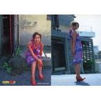 中古コレクションカード(女性) 34 : 酒井若菜/ビジュアルフォトカードコレクション酒井若菜