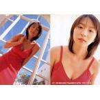 中古コレクションカード(女性) 011 : 酒井若菜/レギュラーカード/SHIN YAMAGISHI TRADING PHOTOCARD COL