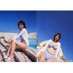 中古コレクションカード(女性) 130 : 酒井若菜/レギュラーカード/SHIN YAMAGISHI TRADING PHOTOCARD COL