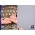 中古コレクションカード(女性) 064 : 眞鍋かをり/レギュラーカード/眞鍋かをり トレーディングカード 〜大人のKAWORI