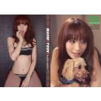 中古コレクションカード(女性) 006 : 優木まおみ/レギュラーカード/優木まおみ ヒッツプレミアム