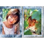 中古コレクションカード(女性) 27 : 釈由美子/レギュラーカード/釈由美子 トレーディングカード 2000 in