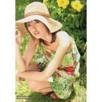 中古コレクションカード(女性) 49 : 南明奈/レギュラーカード/南明奈 オフィシャルカードコレクション アッキ