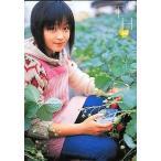 中古コレクションカード(女性) 348 : 橋本甜歌/雑誌「pure×2」Vol.35付録トレカ