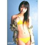 中古コレクションカード(女性) 19 : 加藤沙耶香/レギュラーカード/加藤沙耶香オフィシャルカードコレクション さやまるけ