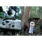 中古コレクションカード(女性) 018 : 市川由衣/Conceptual Collection Card 市川由衣 Visonar
