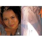 中古コレクションカード(女性) 050 : 市川由衣/Conceptual Collection Card 市川由衣 Visonar
