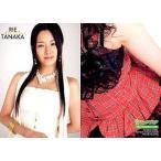 中古コレクションカード(女性) 32 : 田中理恵/ファーストトレーディングカード