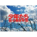 中古パンフレット パンフ)少年たち格子無き牢獄 2012
