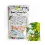 ハーバリウムクラブ ハーバリウムシール 熱帯魚 (両面印刷) HR-NTG-101(手芸・クラフト・生地)