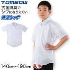 トンボ学生服 形態安定 抗菌防臭 半袖カッターシャツ (140cmA〜190cmA) (定番)
