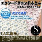(洗えて清潔)エクシードダウン肌ふとん シングル150×210cm