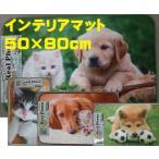 リアルフォト インテリアマット  犬猫動物柄 50×80cm 玄関マット(すべり止め付)