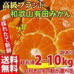 みかん 訳あり 2kg〜10kg 送料無料 ブランド 和歌山みかん 産直みかん 農家直送 人気 規格外 柑橘類 温州みかん ミカン フルーツ 果物