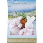 バニーズバイザベイ にぎにぎトイ 雪うさぎの赤ちゃん にんじんラトル ギフトBOXセット ピンク OBBB-050PNK