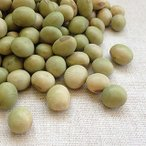秘伝豆 1kg 平成29年 山形県産 青大豆