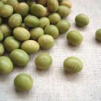 秘伝豆 5kg 2020年 山形県産 青大豆 業務用パック ※例年より粒が小さくなっております