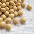 大豆 30kg 2019年 岩手県産 里のほほえみ 送料無料 業務用紙袋 ※あすつく対応不可 ※例年より粒が小さくなっております