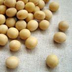 大豆 5kg 2020年 北海道産 とよまさり 業務用パック