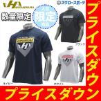 Yahoo!野球用品専門店スワロースポーツあすつく ハタケヤマ hatakeyama 限定 ウェア Hロゴ ワンポイント ライト Tシャツ 半袖 HF-DT19ウェア ウエア 練習着 夏 野球部 新商品 野球用品 スワロース