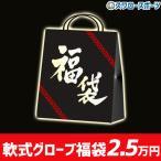 1.8〜3.5万円相当!スワロースポーツ 福袋  軟式 内野手用 内野手 グラブ グローブ FUKU-SW