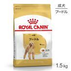 プードル成犬用1.5kg