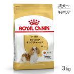 【正規品】ロイヤルカナン BHN  キャバリア キング チャールズ 成犬・高齢犬用 (3kg)