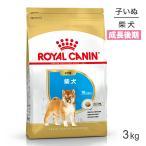 [正規品] ロイヤルカナン 柴犬 子犬用 3kg [送料無