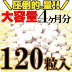 HMB サプリメント(120粒/約4ヵ月分)(10519)/サプリ トレーニング 必須アミノ酸 タンパク質 大容量 国産 ポイント消化 ポスト投函 送料無料