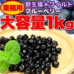 ワイルドブルーベリー 野生種 1kg ドライフルーツ 美容健康 アントシアニン 業務用 常温商品