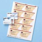 サンワサプライ カラーレーザー用名刺(つやなし・マット) LBP-MMC10N