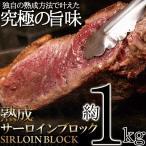 熟成サーロイン ブロック 1kg 熟成肉 冷凍商 牛肉