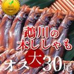 ししゃも 鵡川「オス大30尾」 北海道産むかわのししゃも 本物 北海道干物セットお土産  北海道 海産物ギフト 贈り物