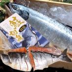 海産物 ギフト 贈り物 北海道 時鮭姿切身「4分割真空」「S-01」北海道産2kg-2.2kg 北海道サケお土産