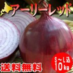 たまねぎ 北海道 アーリーレッド 富良野産 10kg詰め 送料無料