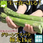 アスパラガス 北海道 富良野産 グリーン 2Lサイズ 1kg 送料無料