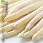 蘆筍 - ホワイトアスパラ 北海道富良野産 Lから3Lサイズ 1kg 送料無料