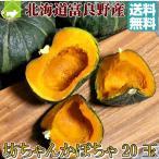 かぼちゃ 北海道富良野産 坊ちゃんかぼちゃ 20玉 送料無料